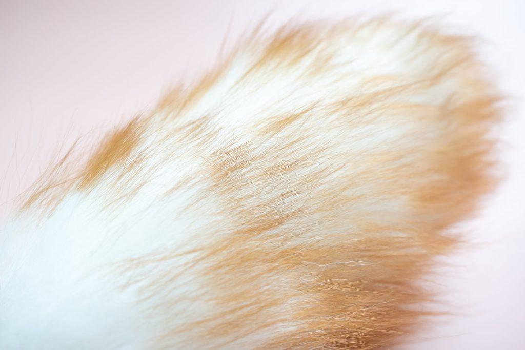北欧暮らしの道具店のウールダスターSの毛並み