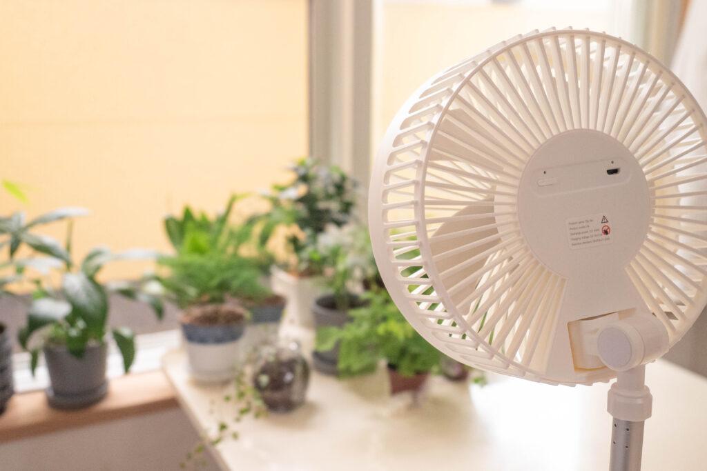 コンパクトクリップ式扇風機を観葉植物に当てる